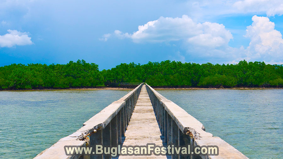 Bais City - Negros Oriental - Mangrove Walk