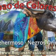 Carabao de Colores 2018 in Vallehermoso, Negros Oriental