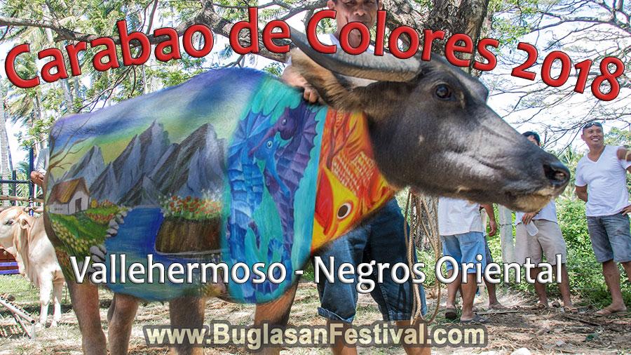 Carabao de Colores 2018 in Vallehermoso, Negros Oriental
