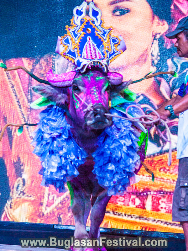 Dumaguete-festival-Carabao-Dancing-on-the-stage-08