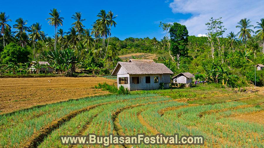 Hinakpan Hills of Guihulngan City